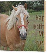 Horse Friend Birthday Wood Print