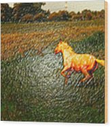 Horse Frolicking Wood Print