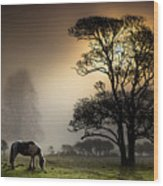Horse Grazing In Field Wood Print by Land and Light