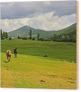 Horse Heaven Wood Print