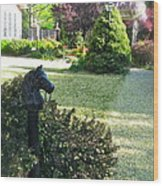 Horse Hitching Post 3 Wood Print