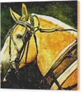Horse In Paint Wood Print