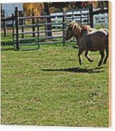 Horse Jump Wood Print