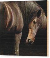 Horse Looking Over Shoulder Wood Print