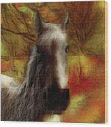 Horse On The Farm Wood Print