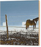 Horse Pasture Revdkblue Wood Print