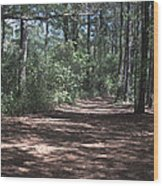 Horse Path Wood Print