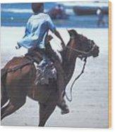 Horse Race In Brazil Wood Print