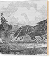 Horse Racing, 1862 Wood Print