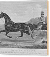 Horse Racing, C1850 Wood Print