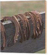 Horsehoes Wood Print