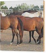 Horses-31 Wood Print