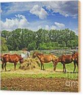 Horses At The Ranch Wood Print by Elena Elisseeva