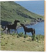 Horses By The Sea Wood Print