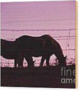 Horses Grazing At Dawn  Wood Print