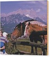 Horses In Switzerland Wood Print