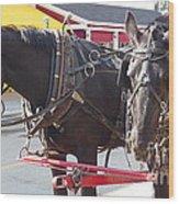 Horses Of Mackinac Wood Print