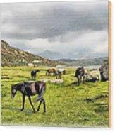 Horses Of Wyoming Wood Print