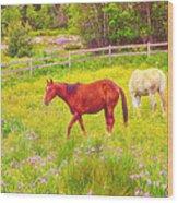 Horses Paradise Wood Print
