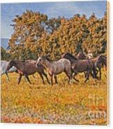 Horses Running Free Wood Print