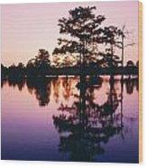 Horseshoe Lake At Dusk Wood Print