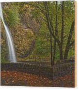 Horsetail Falls Wood Print