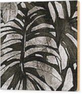 Hostas Version II Wood Print