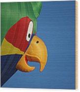 Hot Air Balloon 2 Wood Print