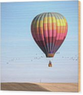 Hot Air Balloon And Birds Wood Print by Photo by Greg Thow