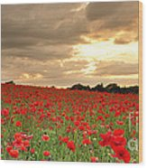 Hot Air Balloon Over Poppy Field Wood Print