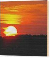 Hot August Sunset In Texas Wood Print by Rebecca Cearley
