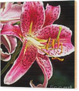 Hot Pink Lily Wood Print