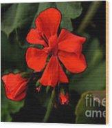Hot Red Wood Print