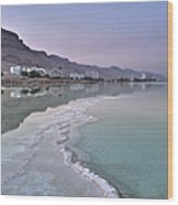 Hotel On The Shore Of The Dead Sea Wood Print