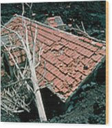 House And Lava Flow Wood Print