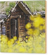 House Behind Yellow Flowers Wood Print