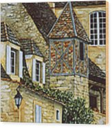 Houses In Sarlat Wood Print by Scott Nelson