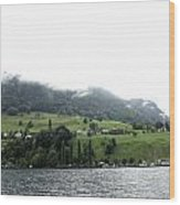 Houses On The Greenery Of The Slope Of A Mountain Next To Lake Lucerne Wood Print