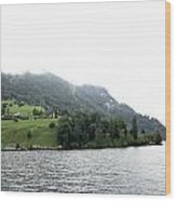 Houses On The Slope Of A Mountain Next To Lake Lucerne Wood Print