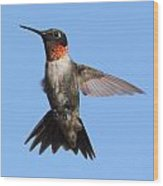 Hovering Wood Print by John G Schickler