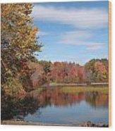 Howard's Lake Wood Print