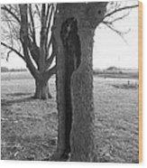 Howling Tree Wood Print