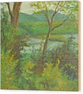 Hudson Highlands View Wood Print