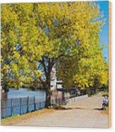 Hudson Riverside Autumn Scenery In Troy  New York Wood Print