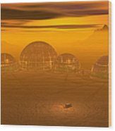 Human Settlement On Alien Planet Wood Print