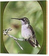 Hummingbird - Gold And Green Wood Print