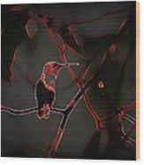 Hummingbird - Ruby-throated Hummingbird- Different Wood Print