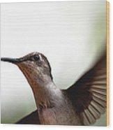 Hummingbird - Closeup Wood Print