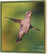 Hummingbird Hello Wood Print
