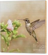 Hummingbird Hovering Wood Print